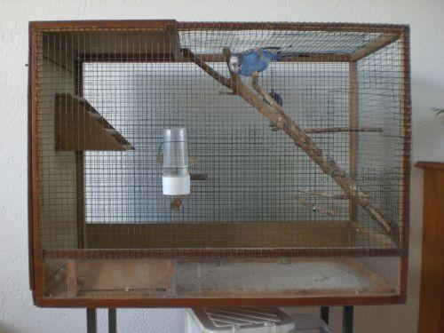 Vogelkooi maken